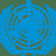 Seminarium UNICEF, UNFPA, WHO